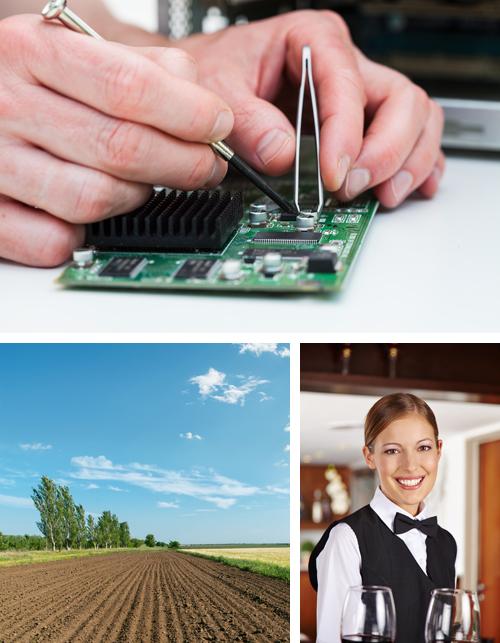 Nuevos Certificados de las Familias Profesionales Agraria, Electricidad y Electrónica y Hostelería y Turismo - CUALIFICA