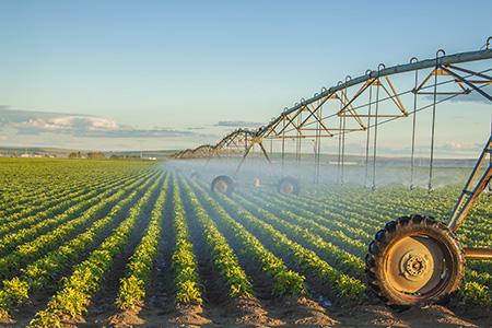 Certificados del Área Profesional de Agricultura - CUALIFICA