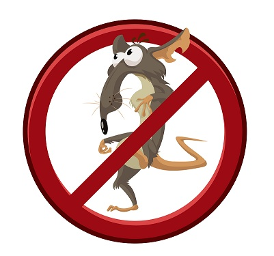Vector image of sign with cartoon funny rat