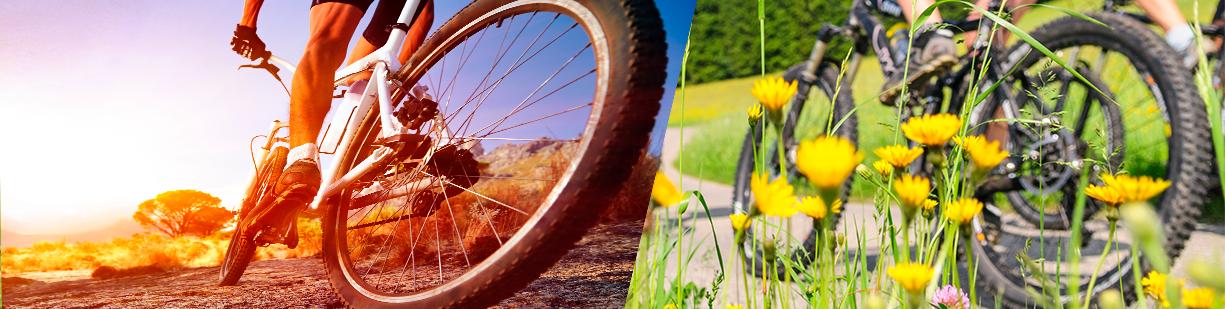 guía por itinerarios en bicicleta
