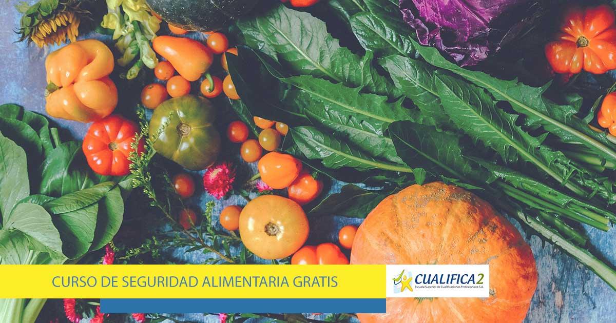 Curso Seguridad Alimentaria Gratis Online