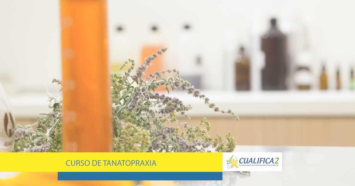Estudios de Tanatopraxia gratuito